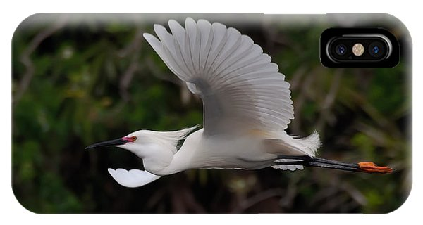Snowy Egret In Flight IPhone Case