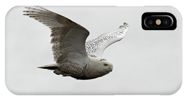 Snowy Owl In Flight Phone Case by Pierre Leclerc Photography