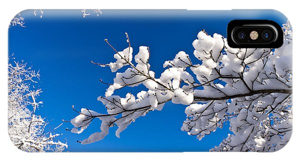 Snowy Trees And Blue Sky IPhone Case