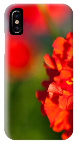 Soft Red Flower IPhone Case