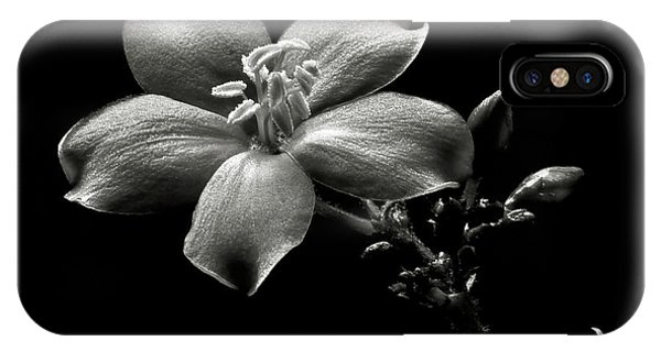 Spicy Jatropha In Black And White IPhone Case