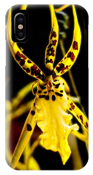 Spider Orchid IPhone Case
