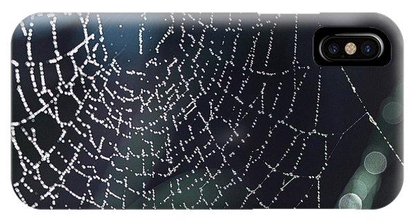 Spiderweb Blues IPhone Case