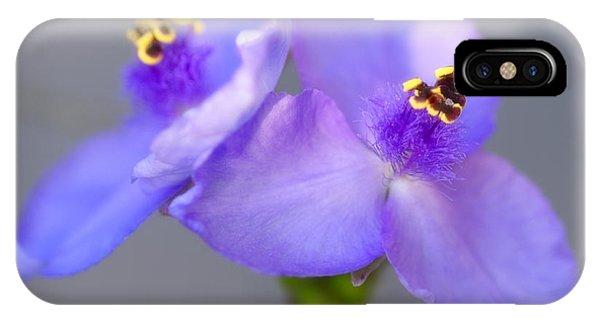 Tradescantia iPhone Case - Spiderwort Flowers by Maria Mosolova