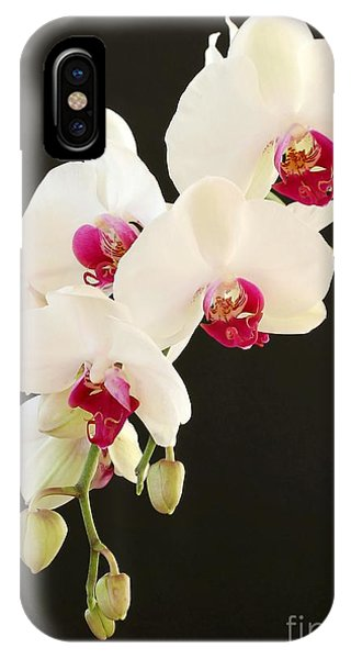 Spray Of White Orchids IPhone Case