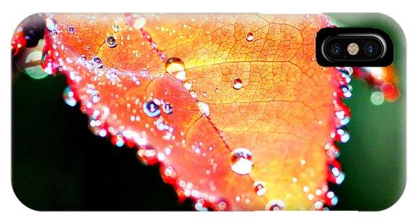 Spring Dew IPhone Case
