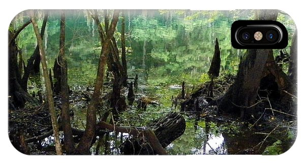 Spring Swamp Reflection IPhone Case