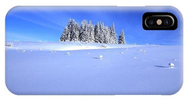Spruce Grove In Winter IPhone Case
