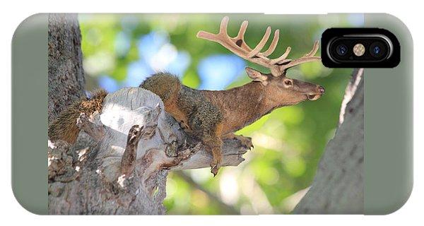 Squirrelk IPhone Case