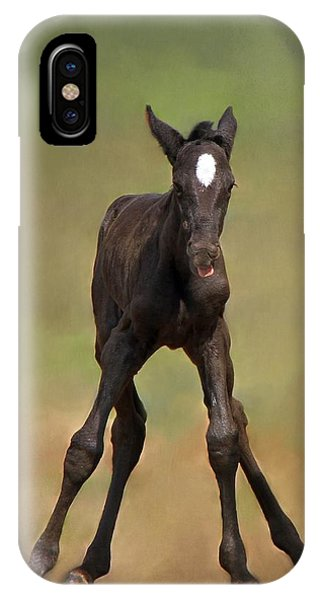 Standing On All Fours IPhone Case