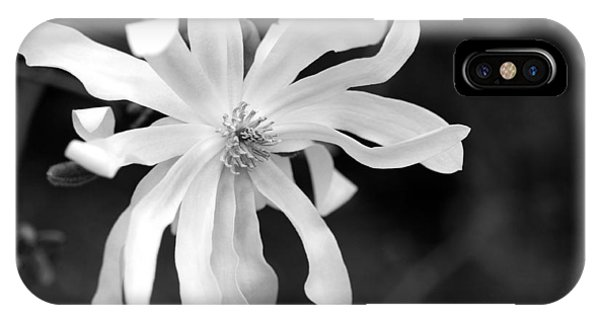 Star Magnolia IPhone Case