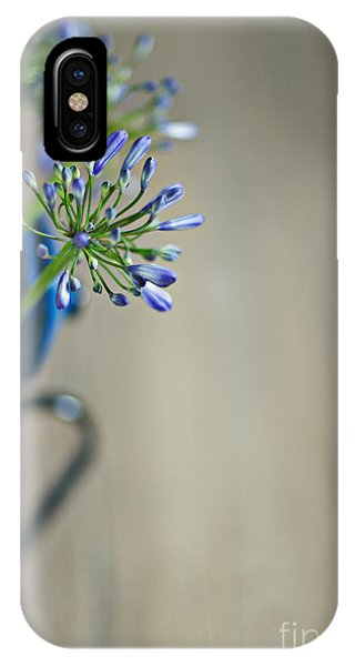 Onion iPhone Case - Still Life 02 by Nailia Schwarz