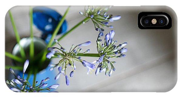 Onion iPhone Case - Still Life 05 by Nailia Schwarz