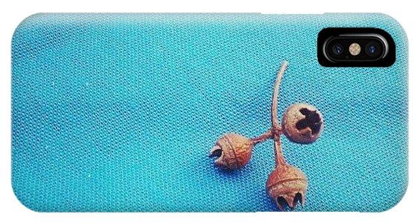 Still Life iPhone Case - Still Life Composition 22092012 by Dorit Stern