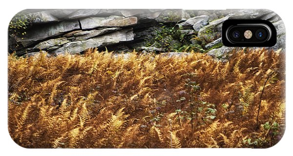 Stone Wall And Fern IPhone Case