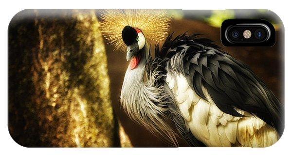 Stunning Peacock IPhone Case