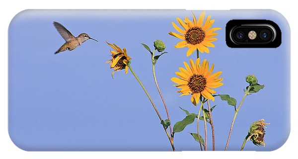 Summer Day Hummingbird IPhone Case