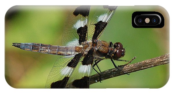 Summer Dragonfly IPhone Case