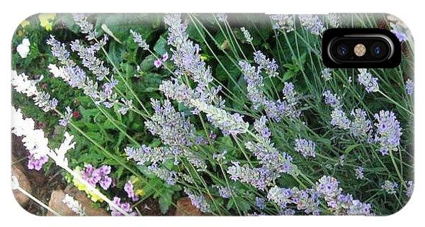 Summer Lavender IPhone Case