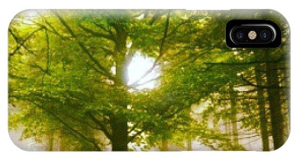 Sunny iPhone Case - Summerskyforest by Kim  Nyheim