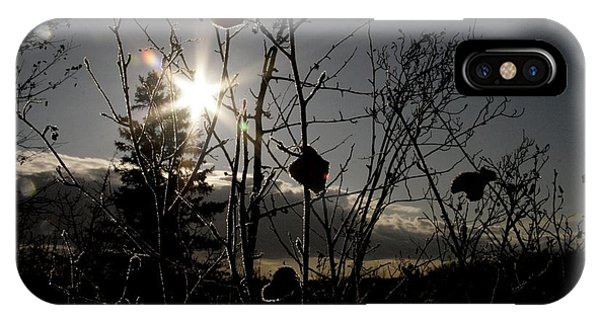 sun Phone Case by Johnathan Evans