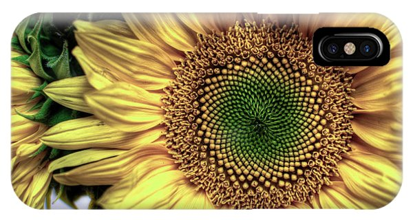 Sunflower 28 IPhone Case