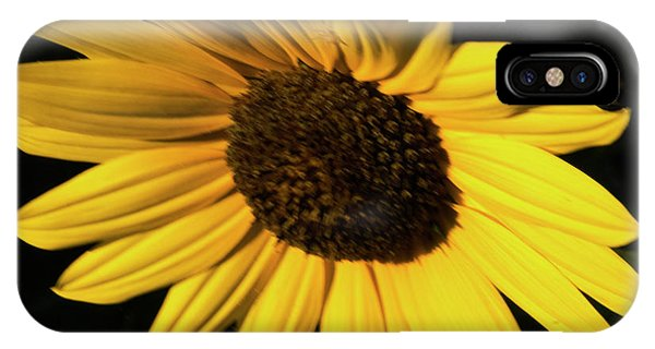 Sunflower At Dusk IPhone Case