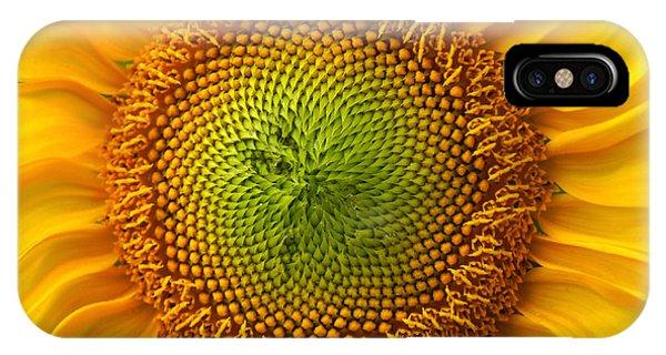Sunflower Fantasy IPhone Case