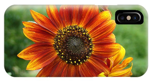 Sunflower Phone Case by Lisa Rose Musselwhite
