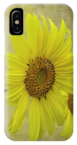Sunflower Trio IPhone Case