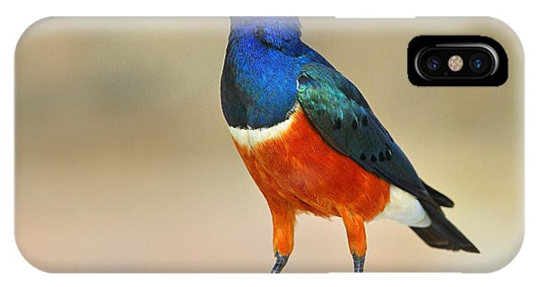 Superb IPhone Case