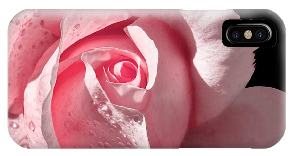Supple Pink Rose Dipped In Dew IPhone Case