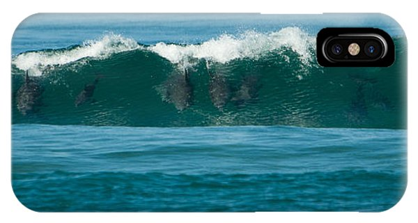 Surfing Dolphins 2 IPhone Case