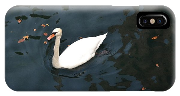 Swan In Autumn IPhone Case