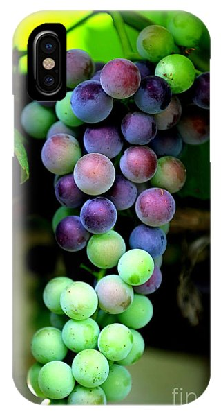 Sweet Grapes IPhone Case