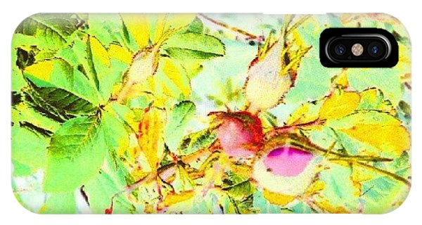 Impressionism iPhone Case - Sweet Rose Buds #android #andrography by Marianne Dow