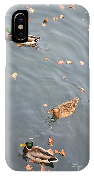 Swimming Ducks And Autumn Leaves IPhone Case