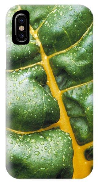 Swiss Chard Leaf Phone Case by Kaj R. Svensson