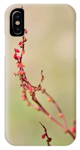 Tenderness In Japanese Style IPhone Case