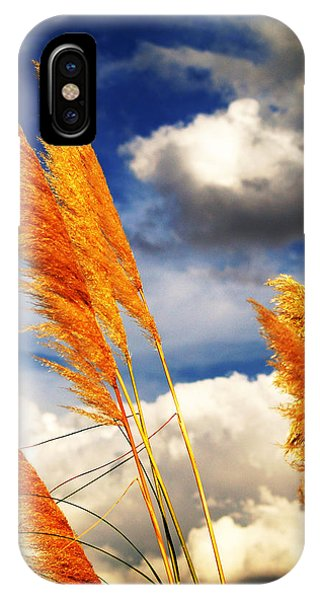 Texas Breeze IPhone Case