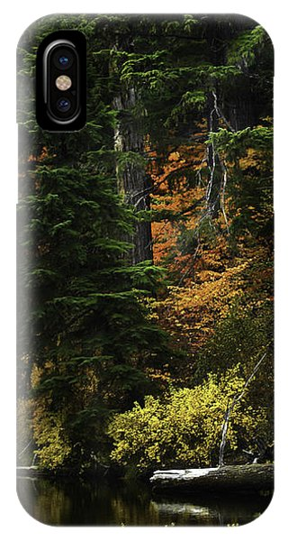The Boldness Of Autumn IPhone Case
