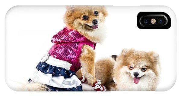 Pomeranian iPhone Case - The Cute Pomeranian Dog Over White by U Schade