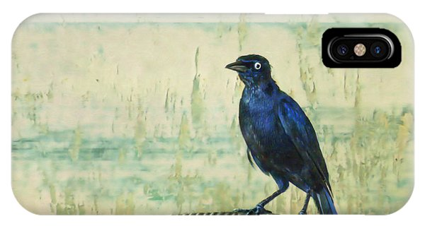 Avian iPhone Case - The Grackle by John Edwards