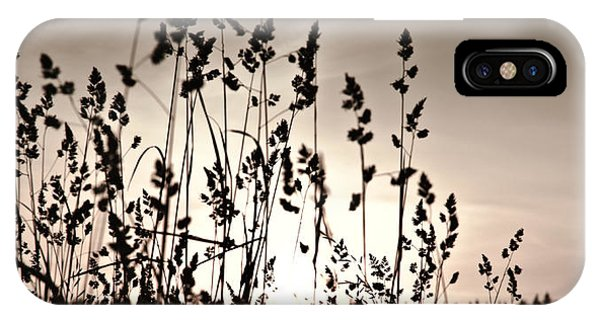 The Grass At Sunset IPhone Case