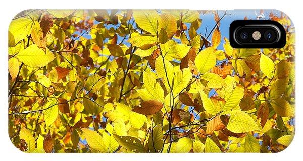 The Joy Of Autumn IPhone Case
