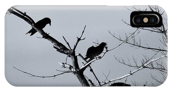 In Flight iPhone Case - The Raven Tree by Susan Capuano