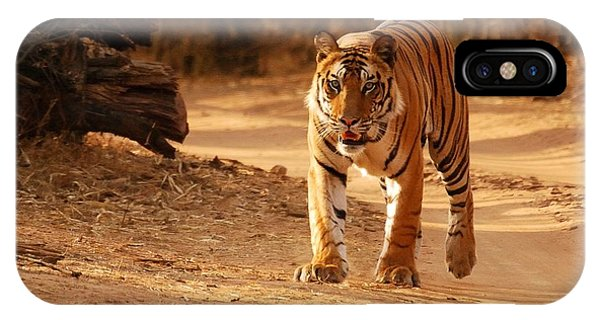 The Royal Bengal Tiger IPhone Case