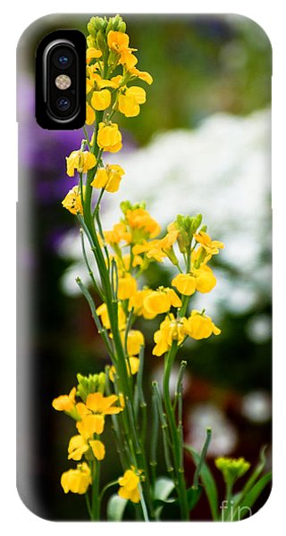 The Yellow Delight IPhone Case