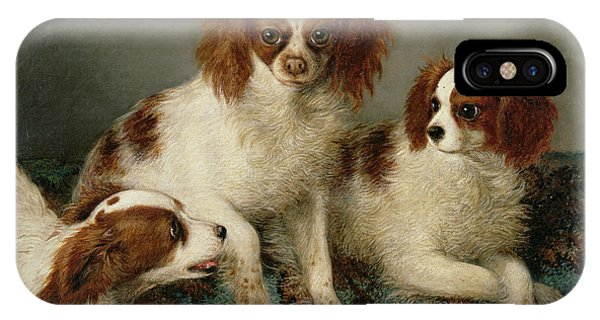 King Charles iPhone Case - Three Cavalier King Charles Spaniels On A Rug by English School