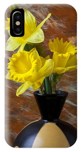 Yellow Trumpet iPhone Case - Three Daffodils by Garry Gay